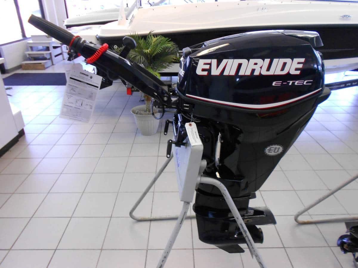 2017 Evinrude E25DGTLAB