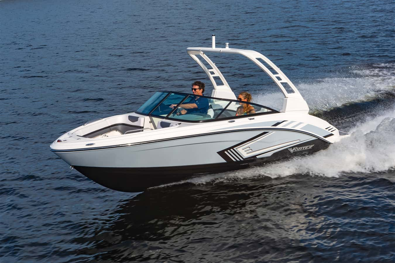 NEW 2019 CHAPARRAL 223 VRX