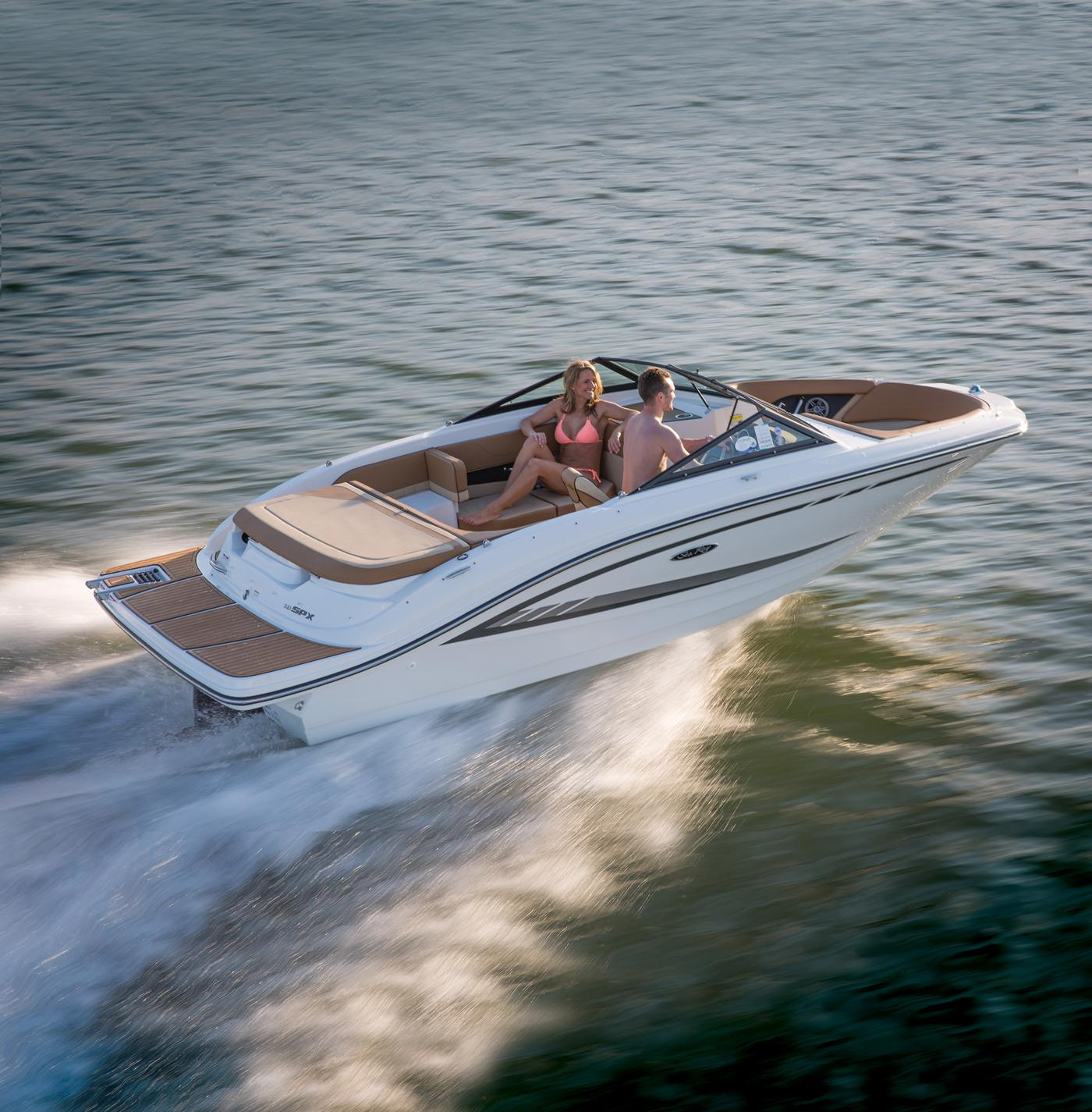 NEW 2019 Sea Ray 19 SPX - Hutchinson's Boat Works