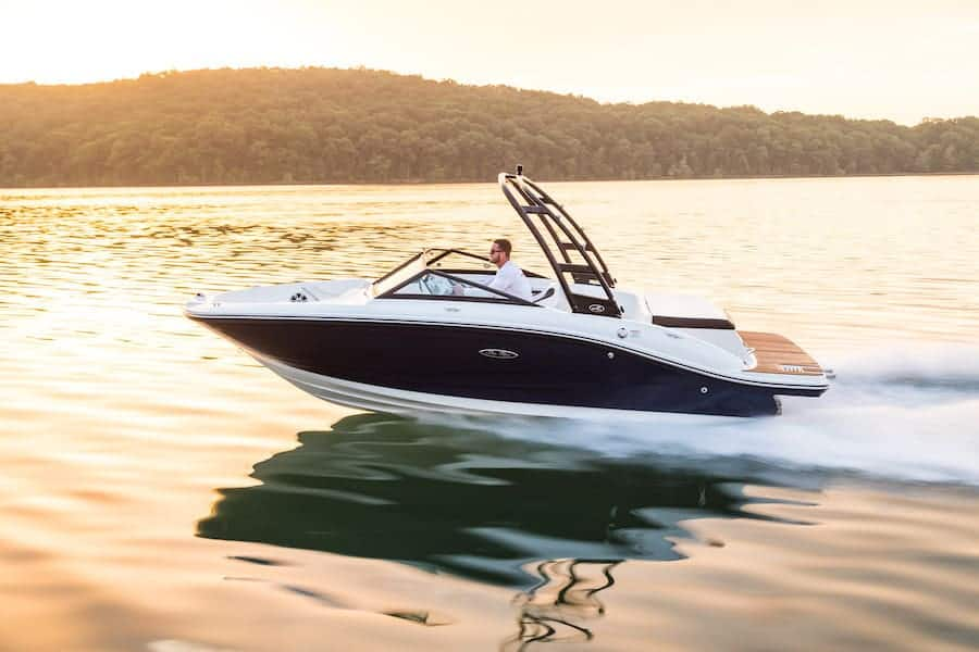 NEW 2019 Sea Ray 190 SPX - Lighthouse Marine