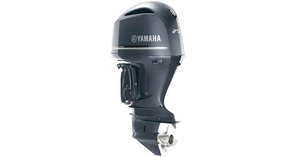2018 Yamaha F250 V6 - 30