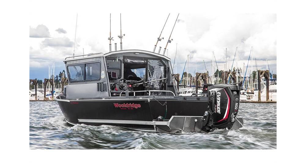 2018 Evinrude 200 H.O. - A200XHC - Sara Bay Marina