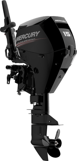 NEW 1 Mercury 15 MLH 4S EFI - Shipwreck Marine